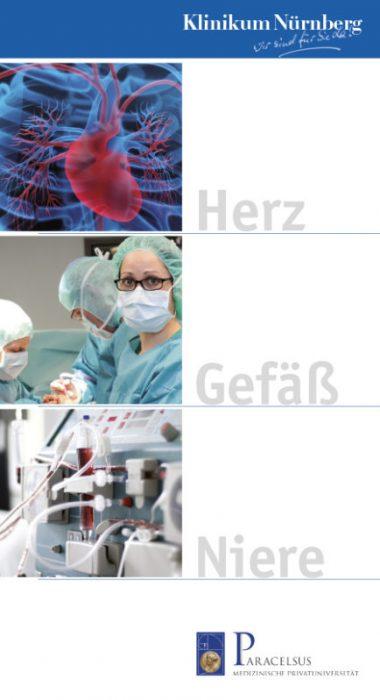 Broschüre Herz Nieren
